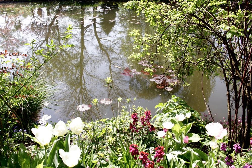 Coup de coeur pour giverny cosmic sam for Le jardin normand