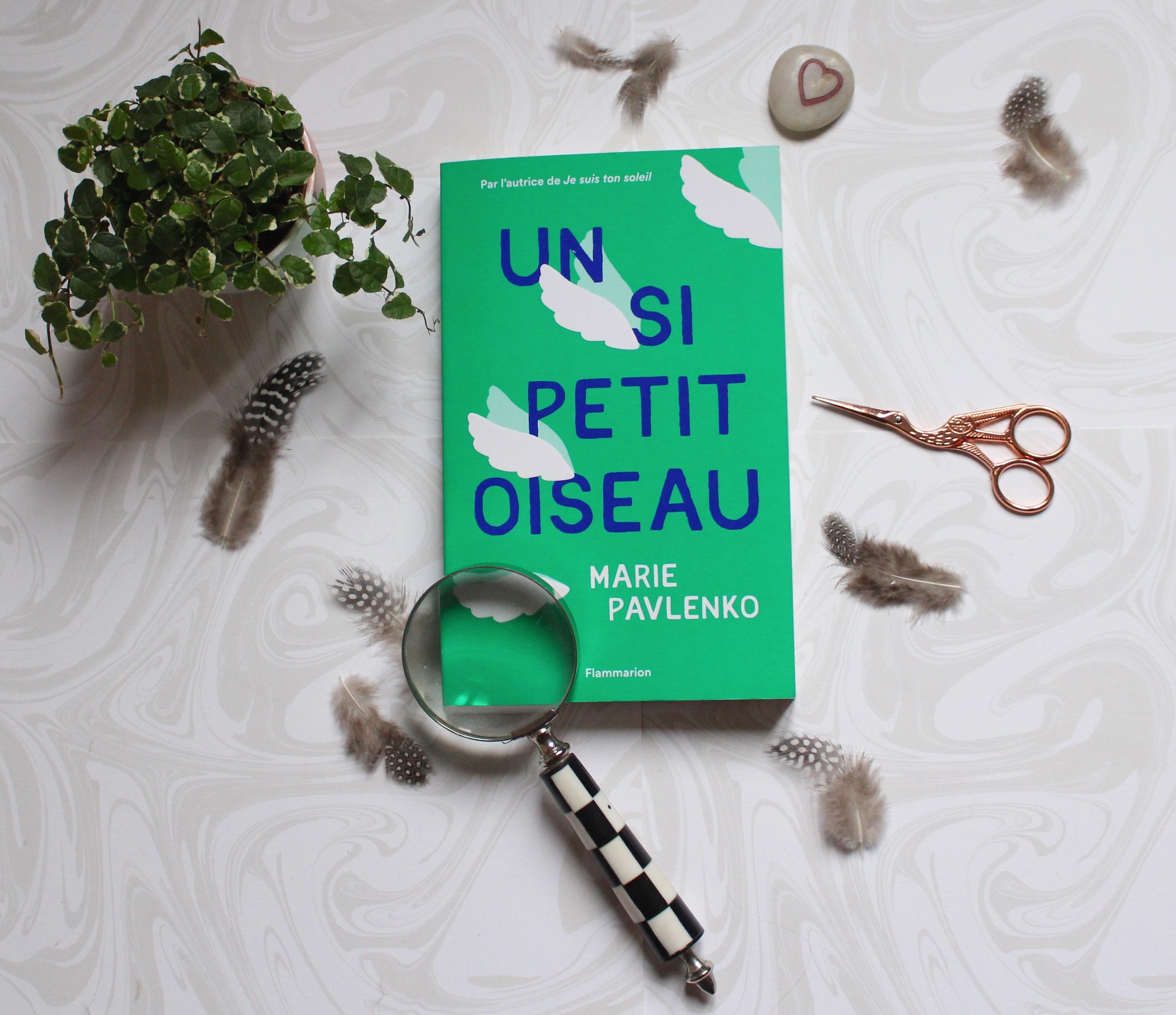 Un Si Petit Oiseau Marie Pavlenko Rencontre L T